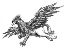 soaring hippogriff